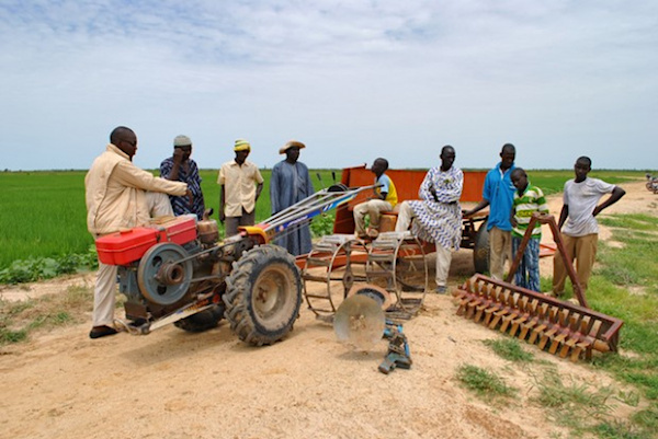 le-togo-est-passe-d-une-agriculture-familiale-a-une-agriculture-plus-modernisee-mais-il-reste-des-defis-kanka-malik-natchaba