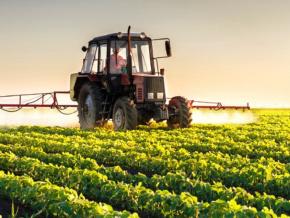 quelles-sont-les-opportunites-d-investissement-dans-l-agrobusiness-au-togo