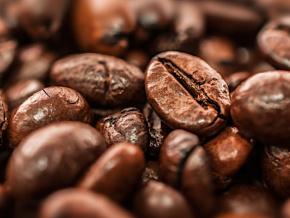 les-operateurs-economiques-de-la-filiere-cafe-cacao-invites-a-s-enregistrer-avant-le-03-septembre