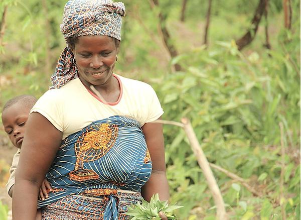 ppaao-togo-95-d-execution-600-000-beneficiaires-et-un-fort-impact-sur-le-secteur-agricole