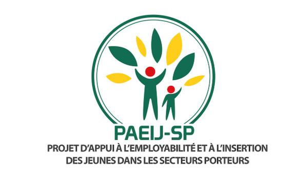 paeij-sp-3-2-milliards-fcfa-alloues-aux-jeunes-entrepreneurs