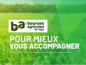 le-togo-se-dote-d-une-bourse-agricole-et-d-une-marketplace