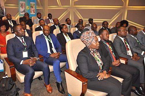 le-togo-lance-un-agenda-estival-pour-sa-diaspora