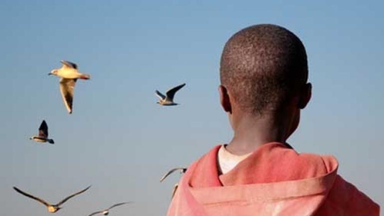 terre-des-hommes-lance-le-projet-corridor-abidjan-lagos-pour-proteger-les-enfants-migrants