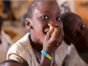 la-malnutrition-en-recul-grace-aux-projets-dans-le-secteur-agricole-et-aux-cantines-scolaires