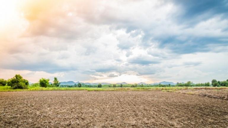des-entreprises-recherchees-pour-l-amenagement-de-8000-hectares-de-terres-agricoles