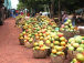 un-fonds-soutenu-par-le-groupe-edmond-de-rothschild-investit-dans-le-secteur-de-l-agro-industrie-au-mali