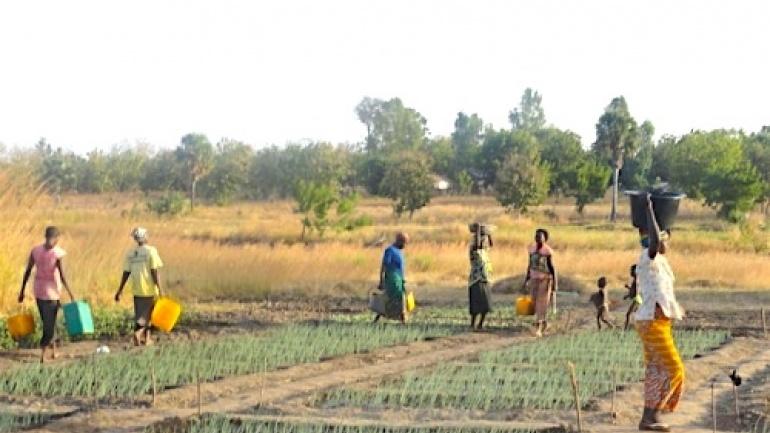 le-togo-veut-optimiser-ses-ressources-mobilisees-au-titre-de-l-aide-publique-au-developpement