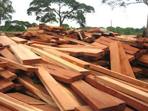le-togo-abritera-en-decembre-la-55eme-session-du-conseil-international-des-bois-tropicaux